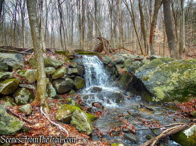 Sylvan Brook cascade