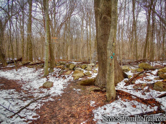 Old Farm Trail - Sylvan Glen Nature Preserve