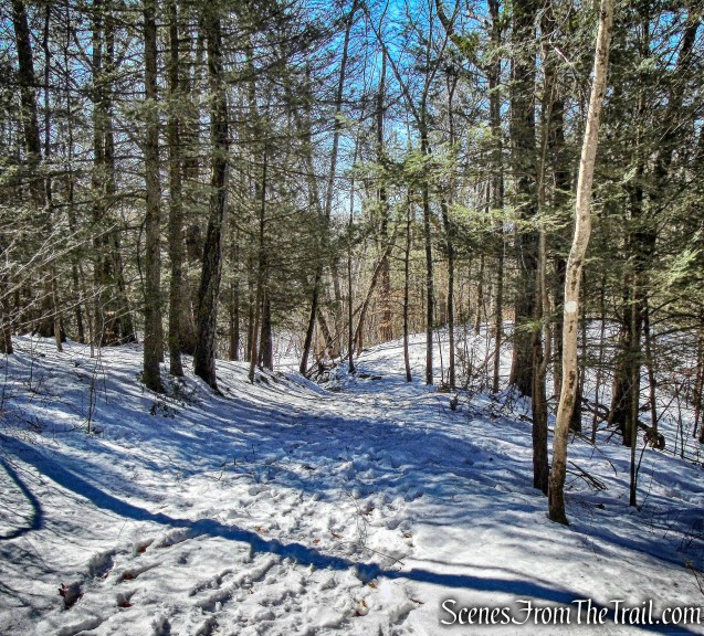 White Circle Trail