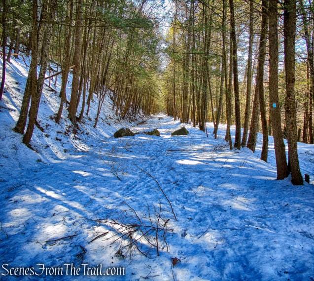 Pinney Loop Trail