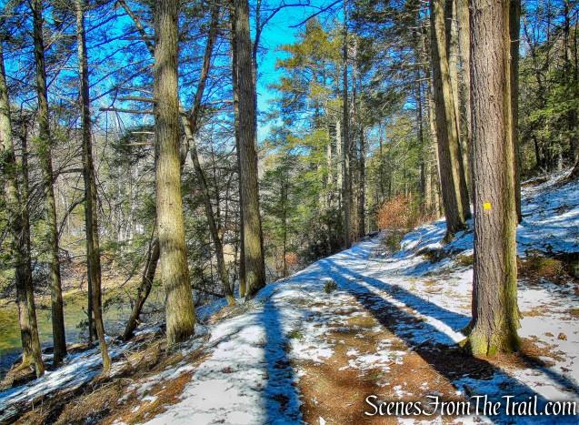 Orange Square Trail