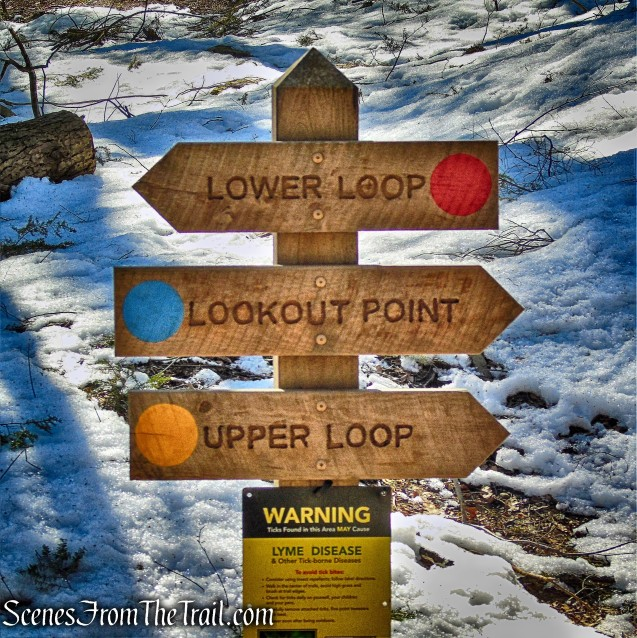 Turn right at the sign for the Lookout Point Trail