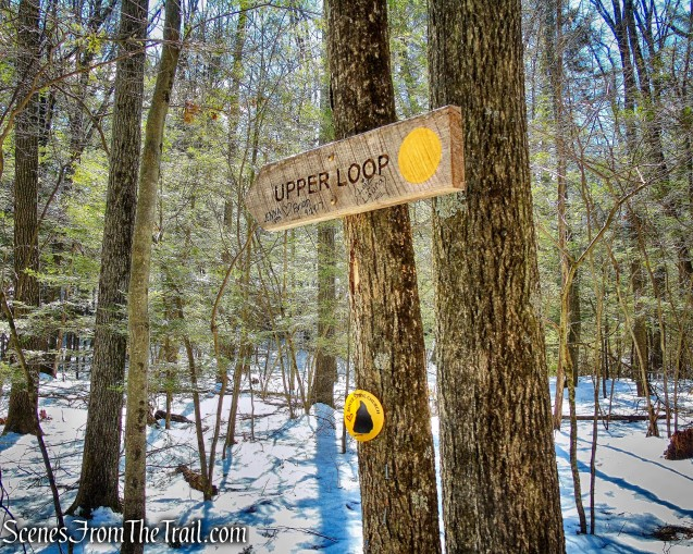 junction with the yellow-blazed Upper Loop Trail