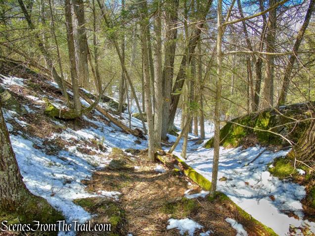 Upper Loop Trail
