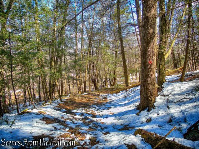 Lower Loop Trail