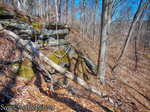 railbed - Gillette Castle State Park