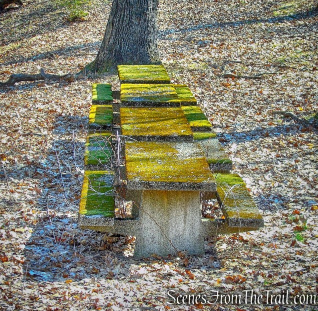 abandoned concrete picnic tables