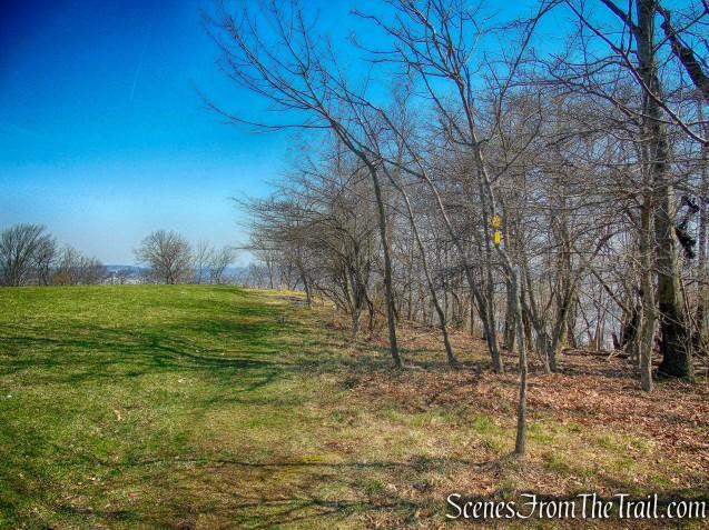 grassy field - Yellow Trail