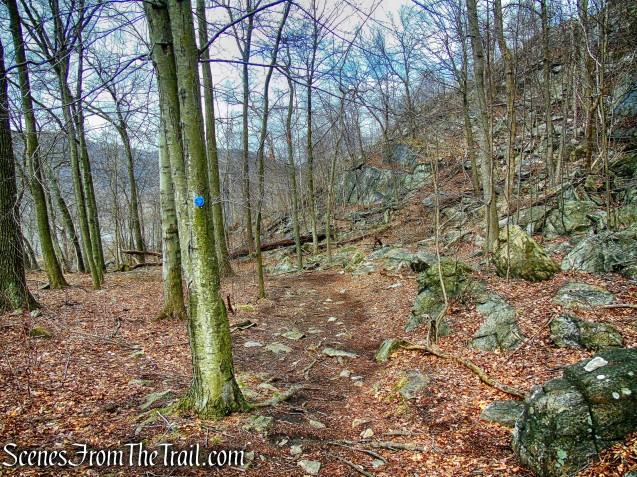 Camp Smith Trail