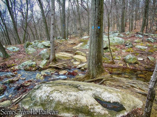 stream - Camp Smith Trail