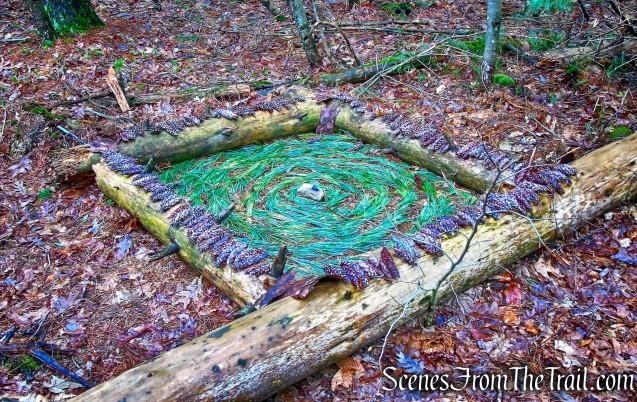 art project? - Horn Hill Loop Mountain Bike Trail