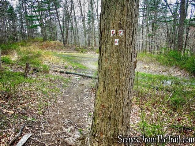 Fawn Trail terminus