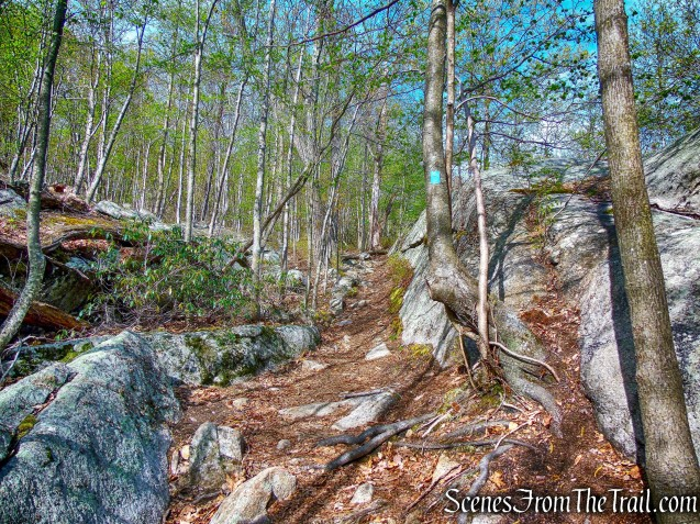 Hewitt-Butler Trail