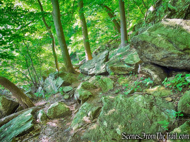 Brooks Lake Trail