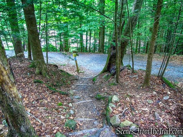 Shongum Path