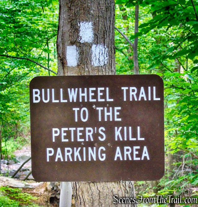 Bull Wheel Trail
