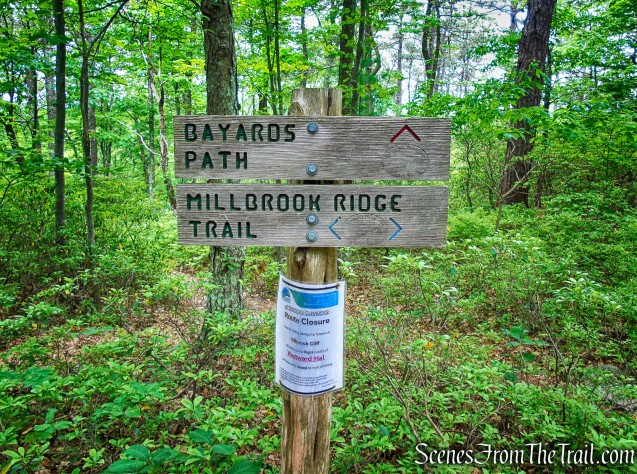 Millbrook Ridge Trail