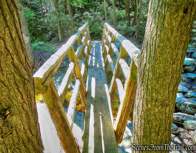 one-log footbridge - Mossy Glen Footpath