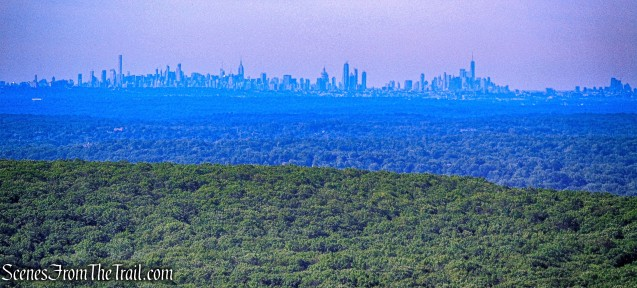 Manhattan skyline - Jackie Jones Fire Tower