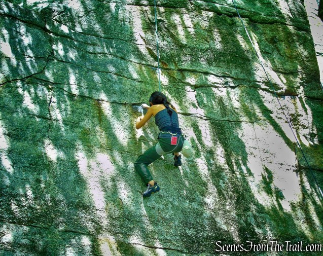 climber - Undercliff Road