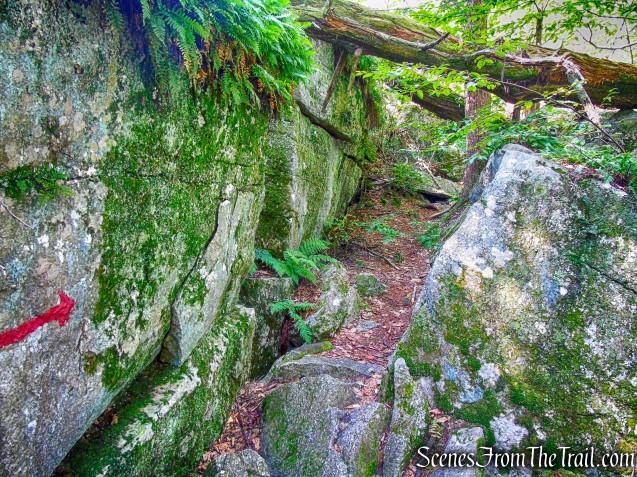 Rock Rift Trail
