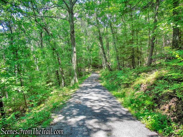 Spring Farm Road