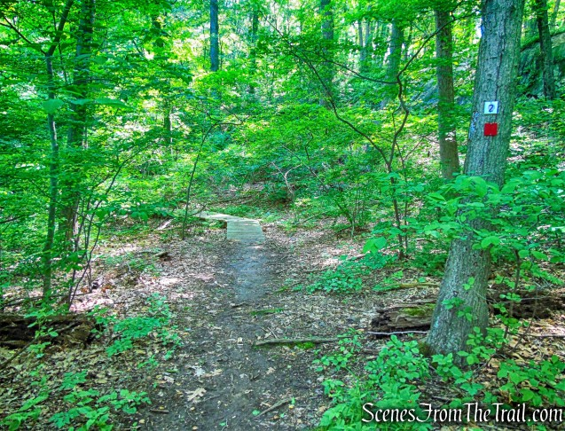 Red Loop Trail/Purple History Loop