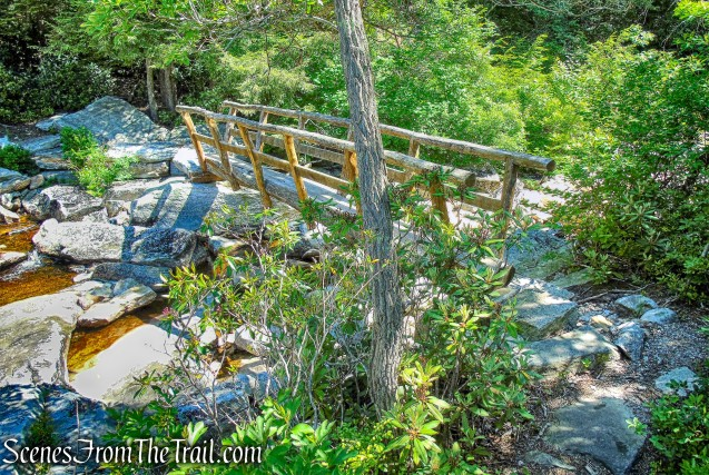 one-log footbridge - Blueberry Run Footpath
