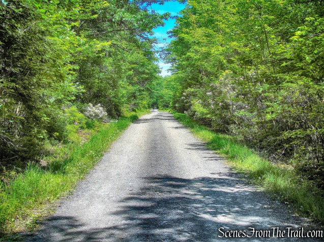 Lower Awosting Carriage Road