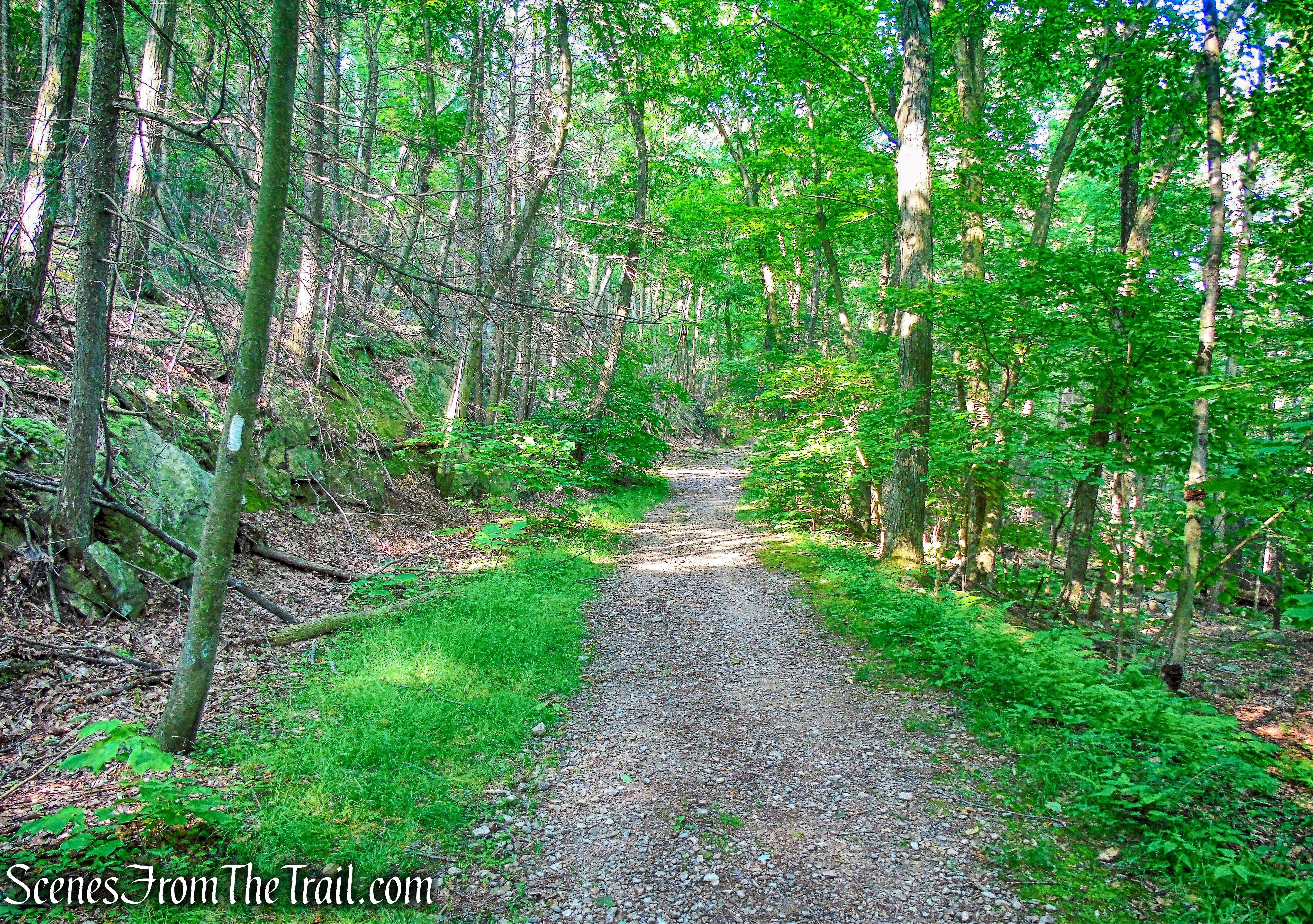 Appalachian Trail/Military Road