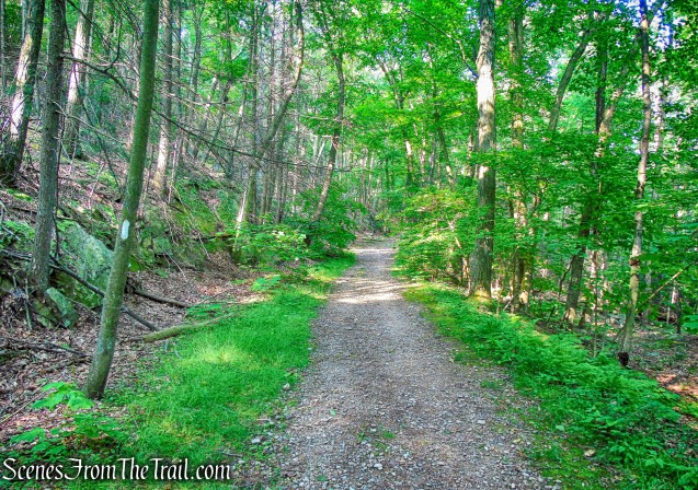 Appalachian Trail/Military Road
