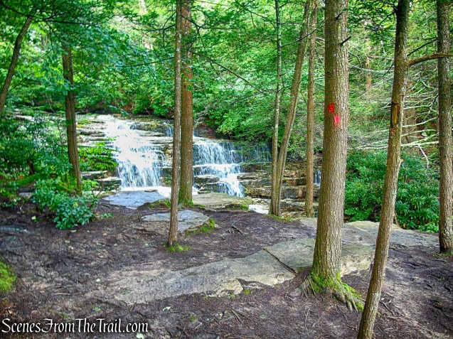Stony Kill Falls Trail