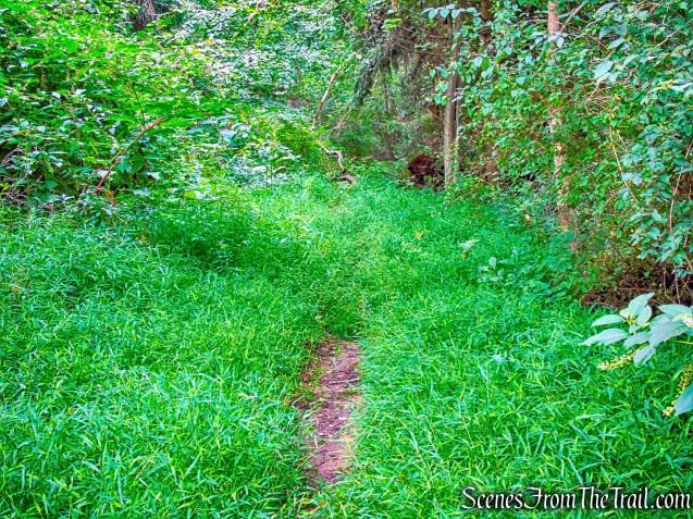 white-blazed Perimeter Trail