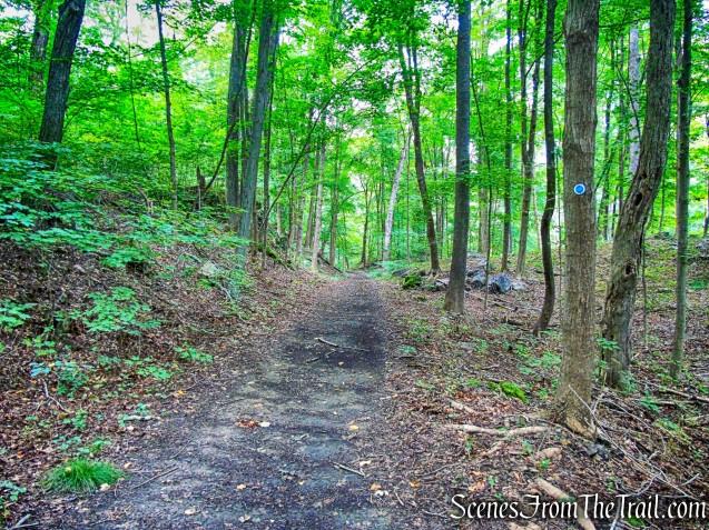 blue-blazed River Trail