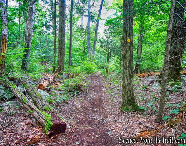 Copper Mine Trail