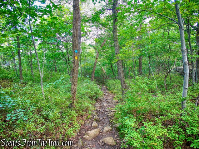 co-aligned Stillman/Highlands Trail