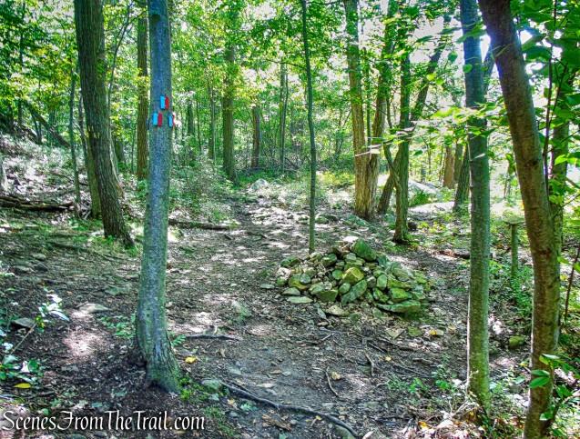 terminus of Bluebird Trail