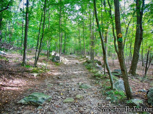 joint Nelsonville Footpath/Undercliff Trail