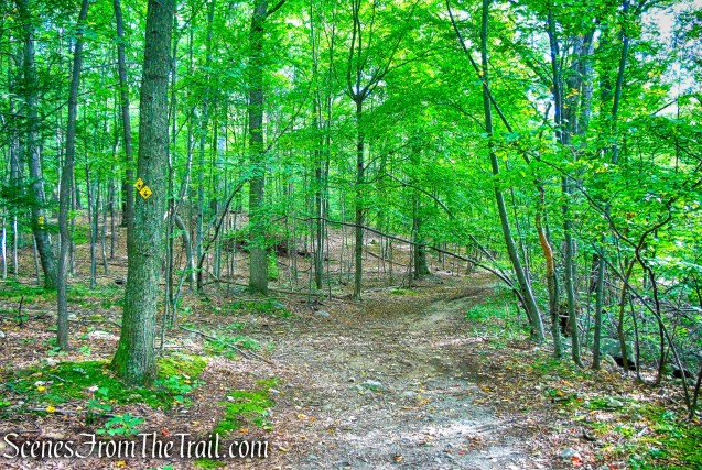 Undercliff Trail leaves to the left