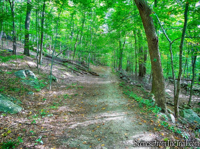 continue ahead on Nelsonville Footpath