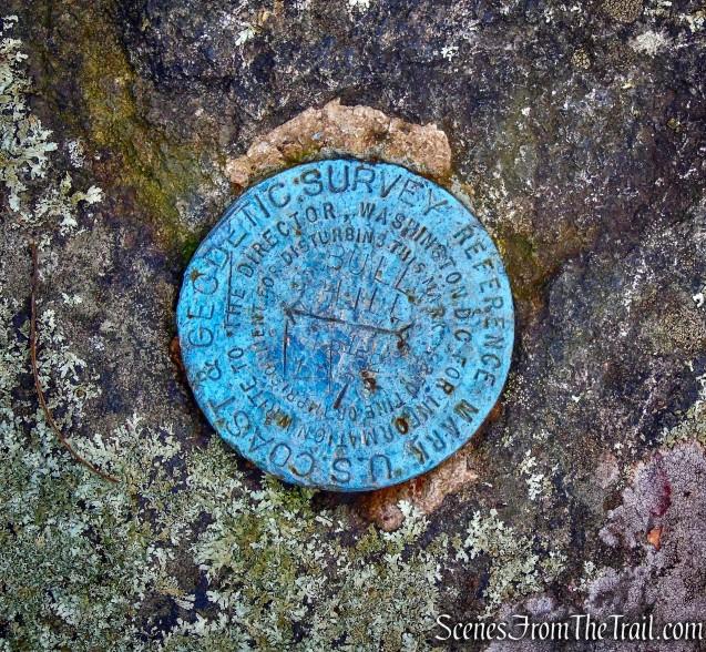 USGS survey marker - summit of Bull Hill