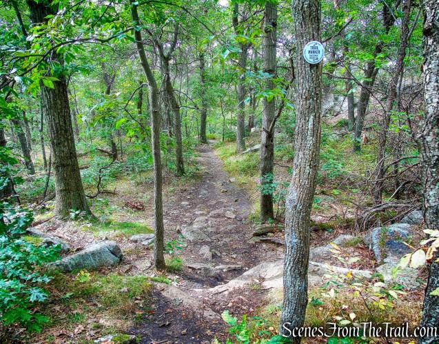 Washburn Trail