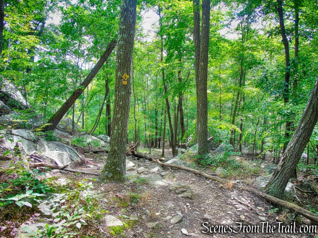 Undercliff Trail