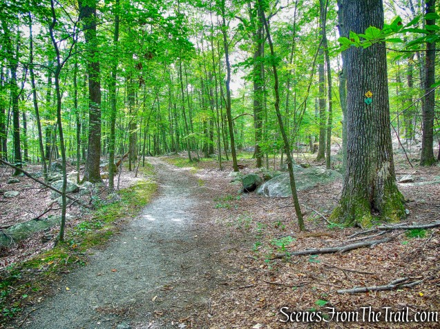 joint Undercliff/Nelsonville Trail