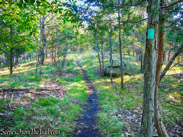 Long Path - South Mountain County Park