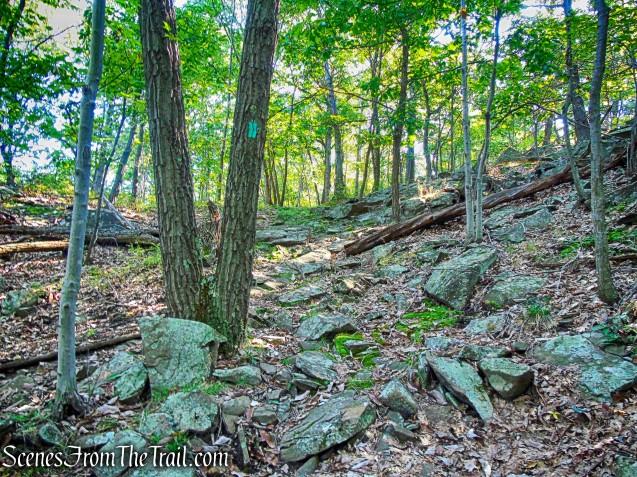 Long Path - South Mountain County Park