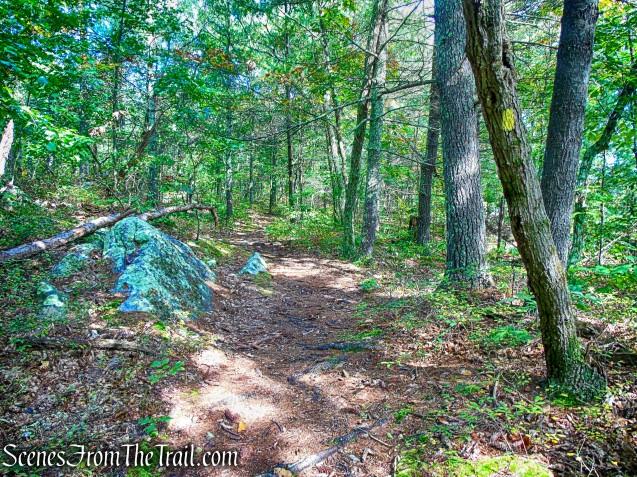Yellow Trail - Giant's Ledges Pocket Park