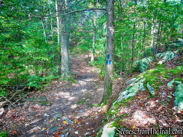 Lime Kiln Trail - Giant's Ledges Pocket Park