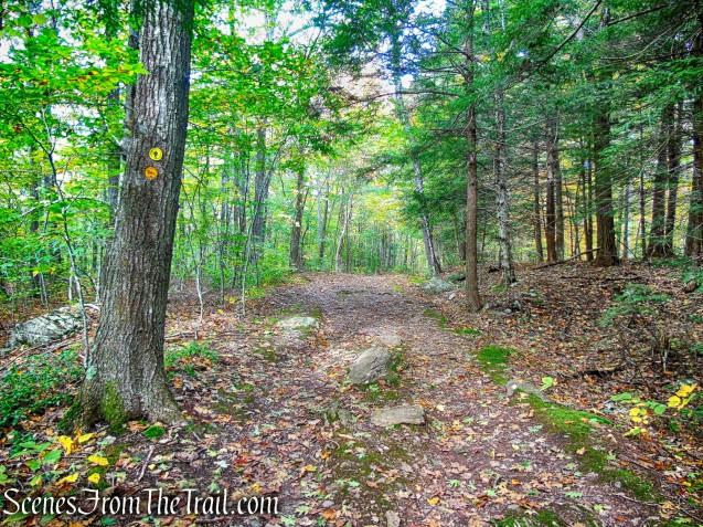 yellow-blazed Horse Trail
