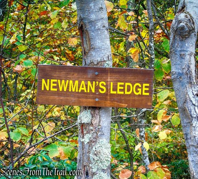Newman's Ledge
